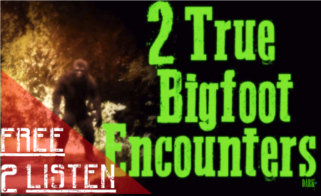 2bigfoot encounters