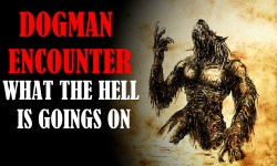 DOGMAN ENCOUTNER WHAT THE HELL_WB